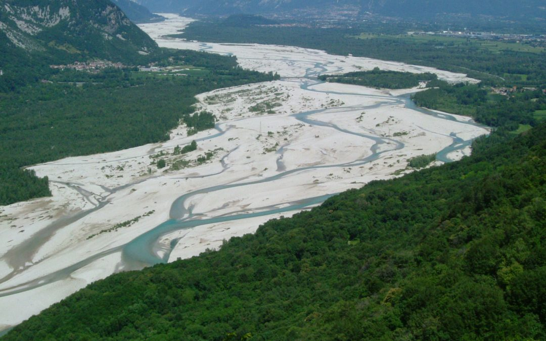 Hydraulic securing of the lower course of the Tagliamento River