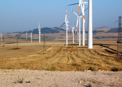 Wind Farms in the Regions of Apulia and Sicily