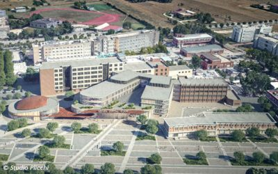 Seismic assessment activities in Foggia Hospital
